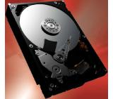 Toshiba P300 - High-Performance Hard Drive 500GB (7200rpm/64MB), BULK